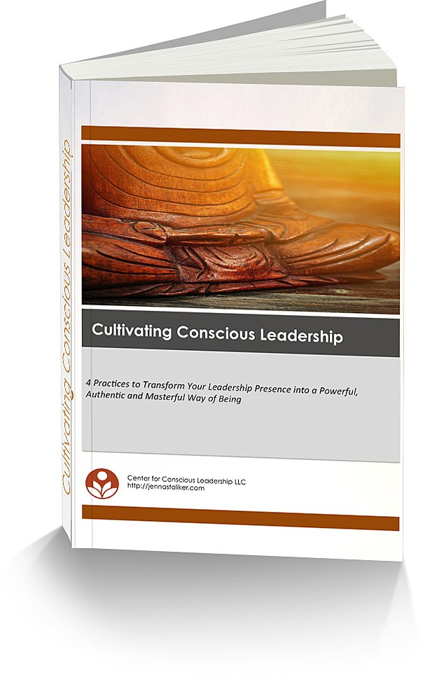 3d Cover_Conscious Leadership_604x964
